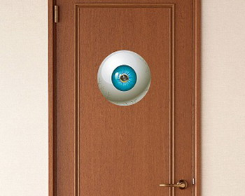 �������� �������� �� ������� ������ �Big Brother Spy Eye�